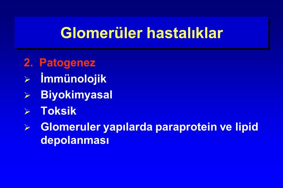 Glomerüler hastalıklar 2. Patogenez  İmmünolojik  Biyokimyasal  Toksik  Glomeruler yapılarda paraprotein ve lipid depolanması