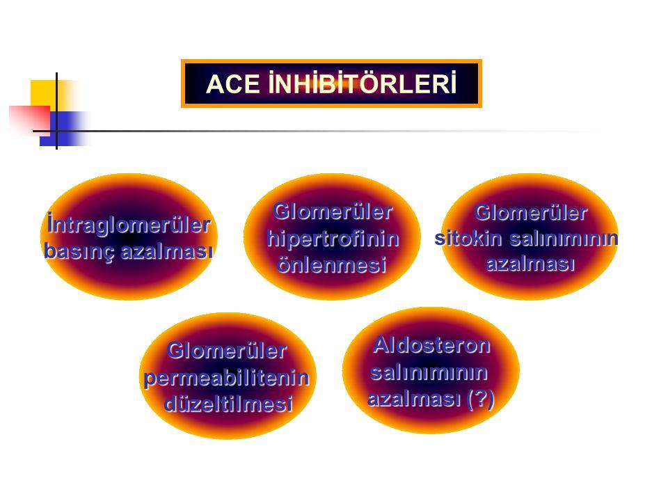 İntraglomerüler basınç azalması GlomerülerhipertrofininönlenmesiGlomerüler sitokin salınımının azalması Glomerülerpermeabilitenindüzeltilmesi Aldoster