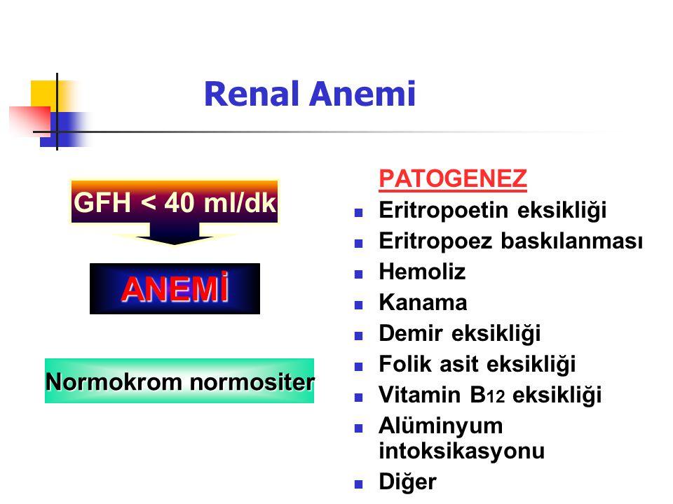 Renal Anemi PATOGENEZ Eritropoetin eksikliği Eritropoez baskılanması Hemoliz Kanama Demir eksikliği Folik asit eksikliği Vitamin B 12 eksikliği Alümin