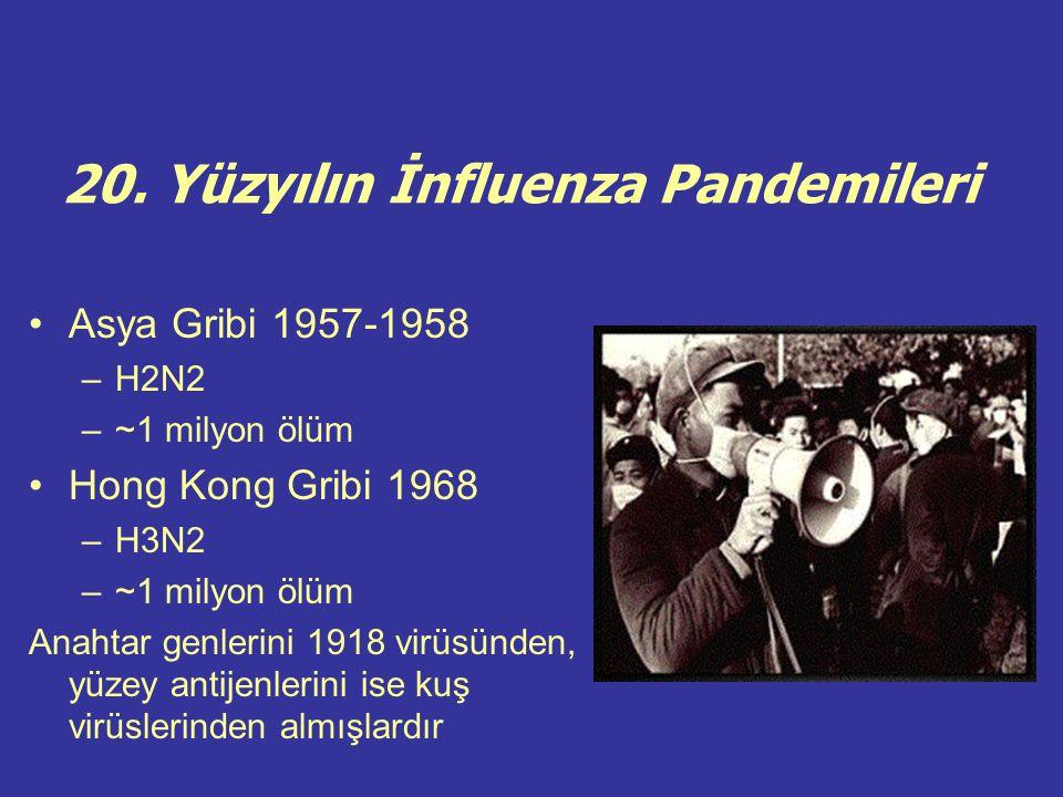 20. Yüzyılın İnfluenza Pandemileri Asya Gribi 1957-1958 –H2N2 –~1 milyon ölüm Hong Kong Gribi 1968 –H3N2 –~1 milyon ölüm Anahtar genlerini 1918 virüsü
