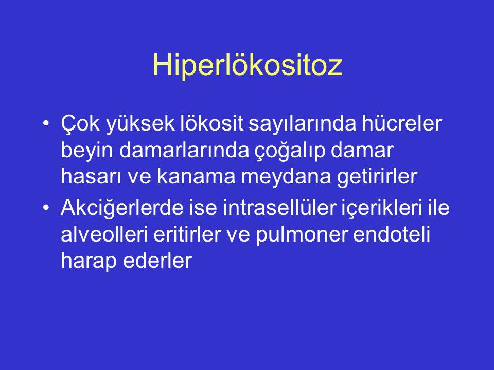 Hiperlökositoz Çok yüksek lökosit sayılarında hücreler beyin damarlarında çoğalıp damar hasarı ve kanama meydana getirirler Akciğerlerde ise intrasell