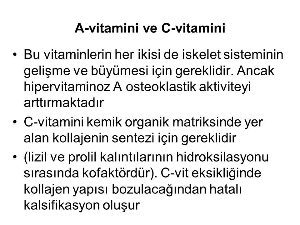 A-vitamini ve C-vitamini Bu vitaminlerin her ikisi de iskelet sisteminin gelişme ve büyümesi için gereklidir.