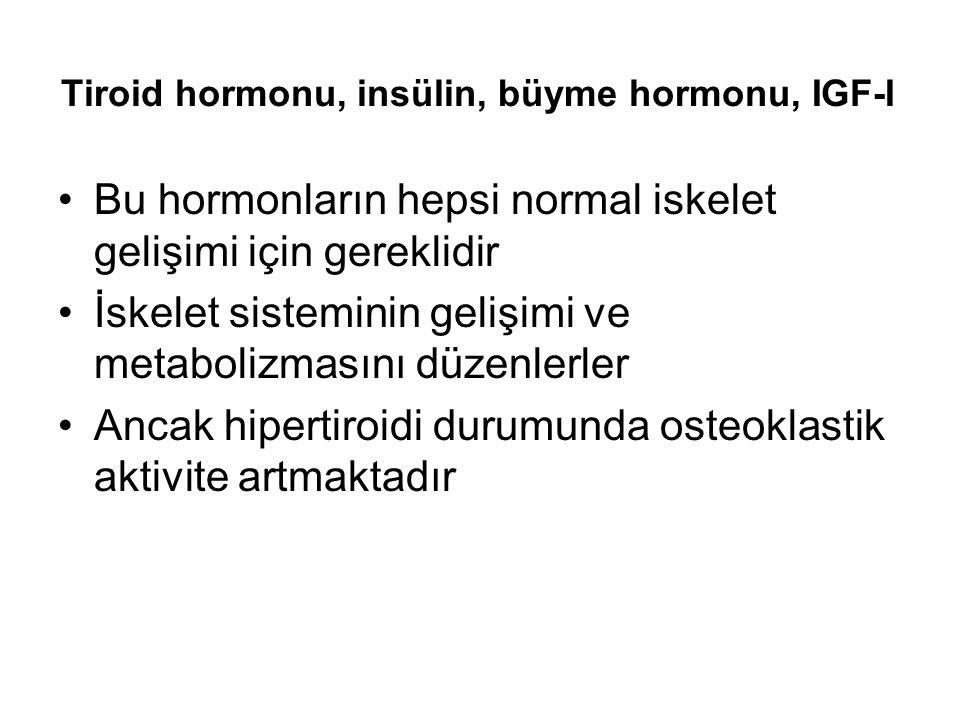Tiroid hormonu, insülin, büyme hormonu, IGF-I Bu hormonların hepsi normal iskelet gelişimi için gereklidir İskelet sisteminin gelişimi ve metabolizmasını düzenlerler Ancak hipertiroidi durumunda osteoklastik aktivite artmaktadır