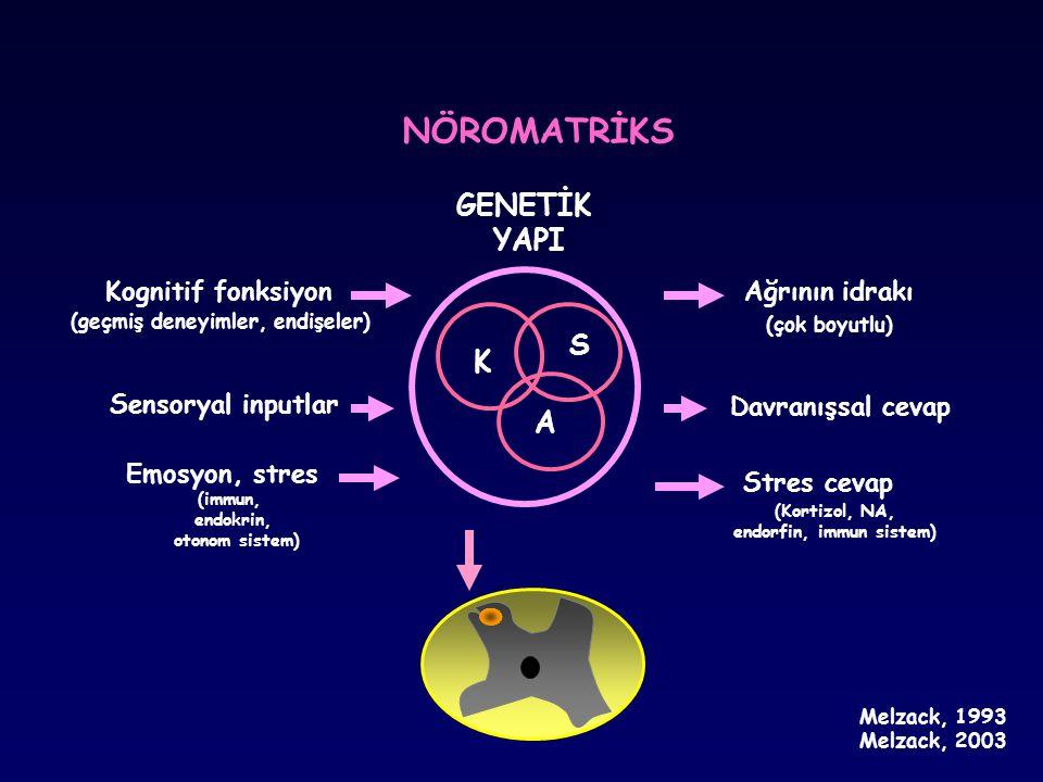 Kognitif fonksiyon (geçmiş deneyimler, endişeler) Sensoryal inputlar Emosyon, stres (immun, endokrin, otonom sistem) Ağrının idrakı (çok boyutlu) (Kor