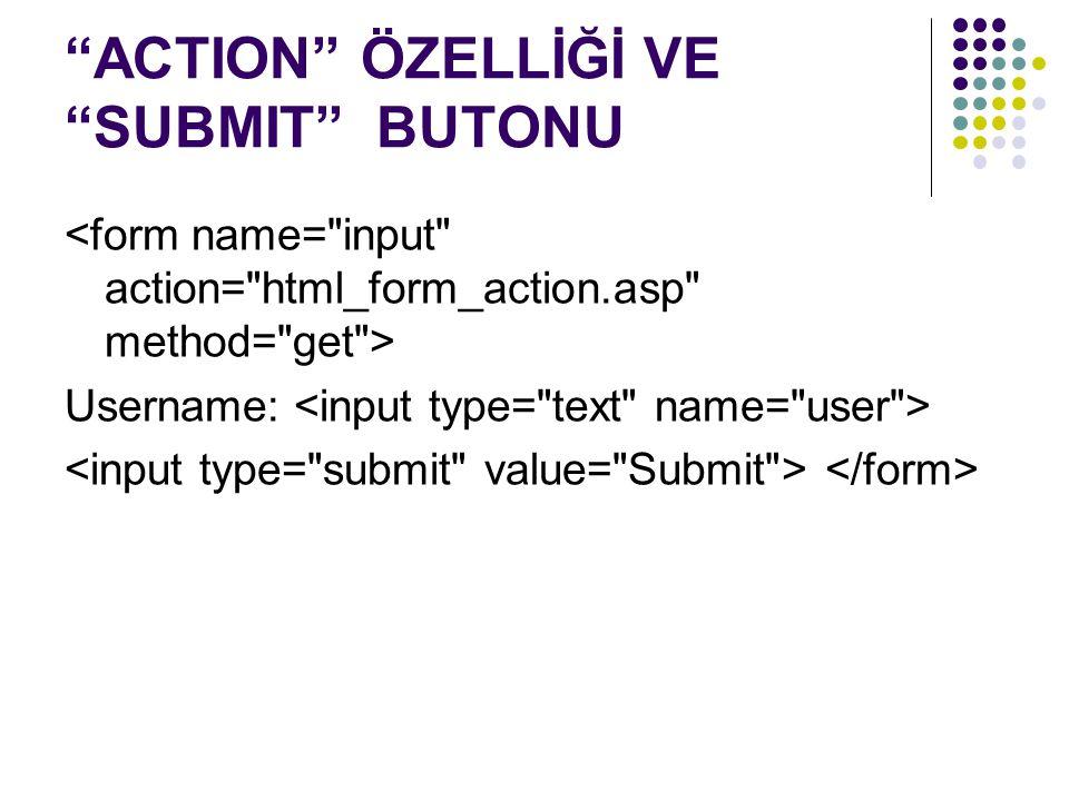 ACTION ÖZELLİĞİ VE SUBMIT BUTONU Username: