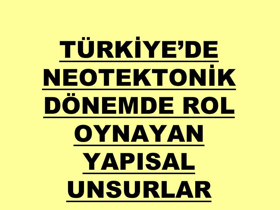 TÜRKİYE'DE NEOTEKTONİK DÖNEMDE ROL OYNAYAN YAPISAL UNSURLAR