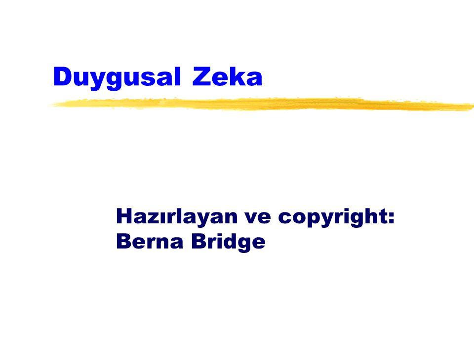 Duygusal Zeka Hazırlayan ve copyright: Berna Bridge