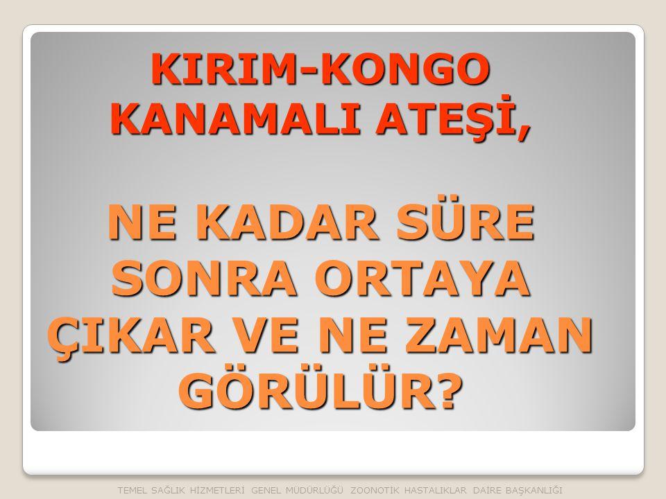 KIRIM-KONGO KANAMALI ATEŞİ, NE KADAR SÜRE SONRA ORTAYA ÇIKAR VE NE ZAMAN GÖRÜLÜR.