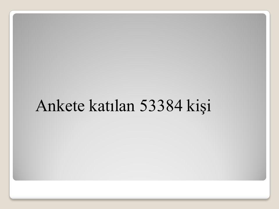 Ankete katılan 53384 kişi