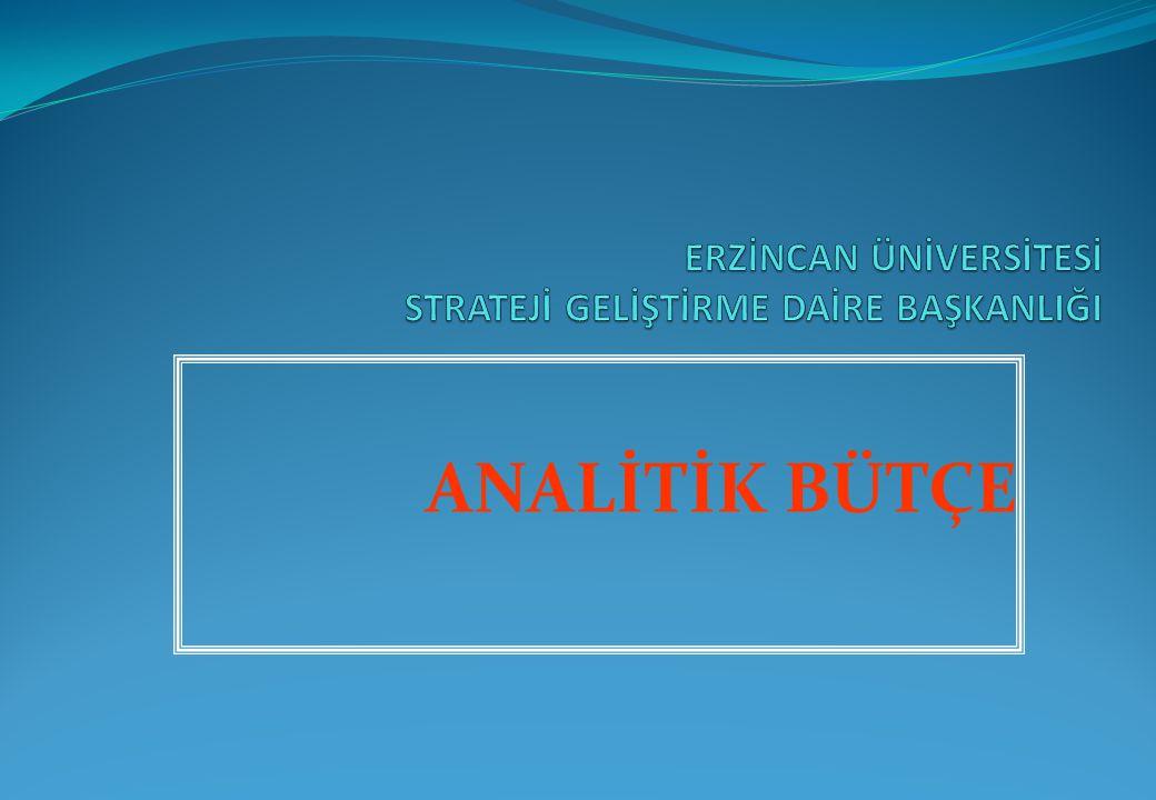 ANALİTİK BÜTÇE