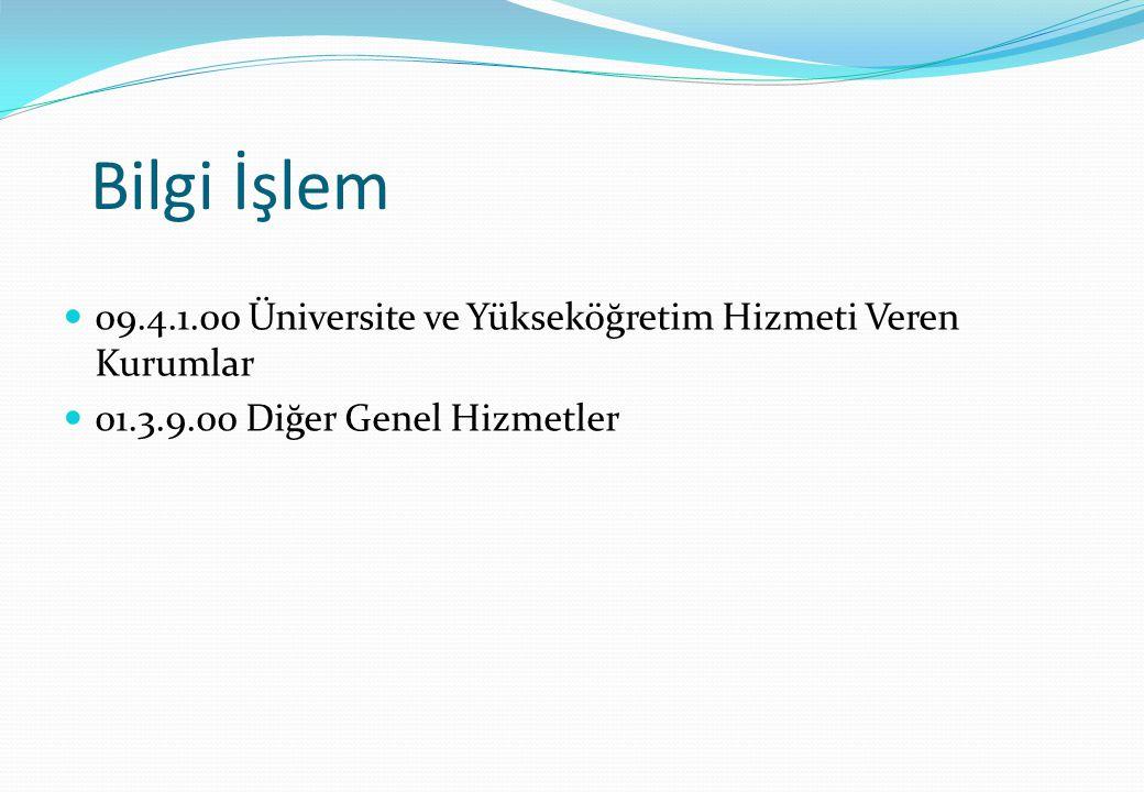 Bilgi İşlem 09.4.1.00 Üniversite ve Yükseköğretim Hizmeti Veren Kurumlar 01.3.9.00 Diğer Genel Hizmetler