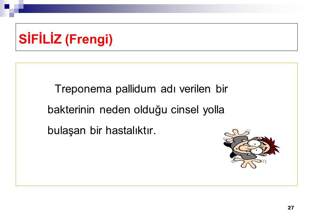 27 SİFİLİZ (Frengi) Treponema pallidum adı verilen bir bakterinin neden olduğu cinsel yolla bulaşan bir hastalıktır.