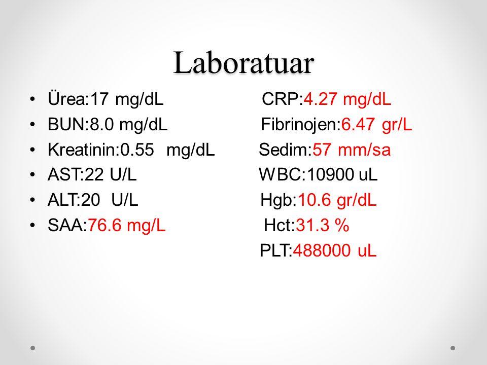 Laboratuar Ürea:17 mg/dL CRP:4.27 mg/dL BUN:8.0 mg/dL Fibrinojen:6.47 gr/L Kreatinin:0.55 mg/dL Sedim:57 mm/sa AST:22 U/L WBC:10900 uL ALT:20 U/L Hgb: