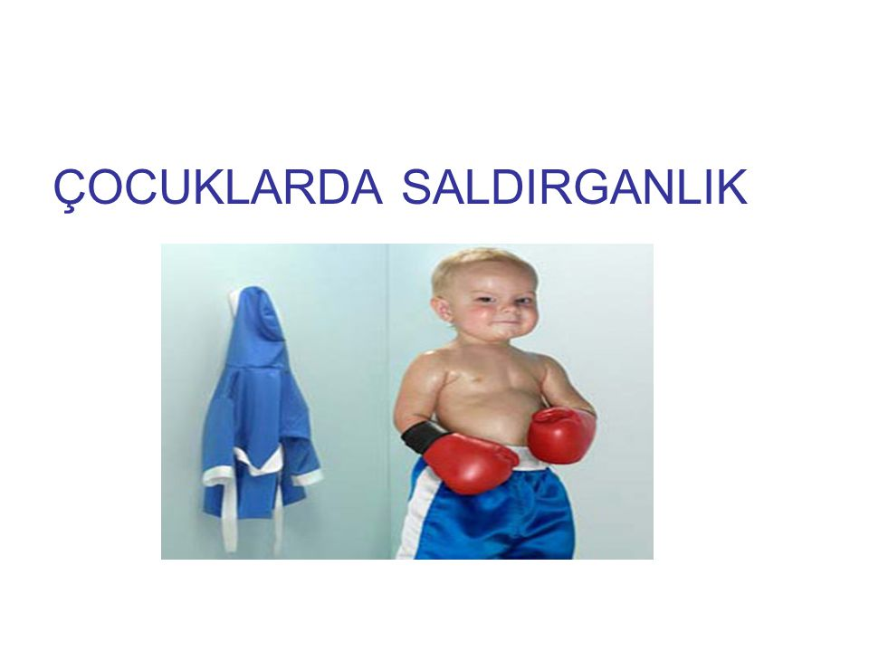 ÇOCUKLARDA SALDIRGANLIK