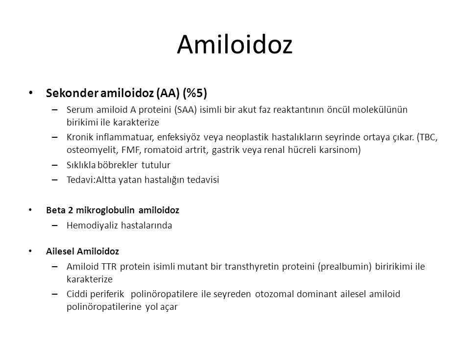 Amiloidoz Sekonder amiloidoz (AA) (%5) – Serum amiloid A proteini (SAA) isimli bir akut faz reaktantının öncül molekülünün birikimi ile karakterize –