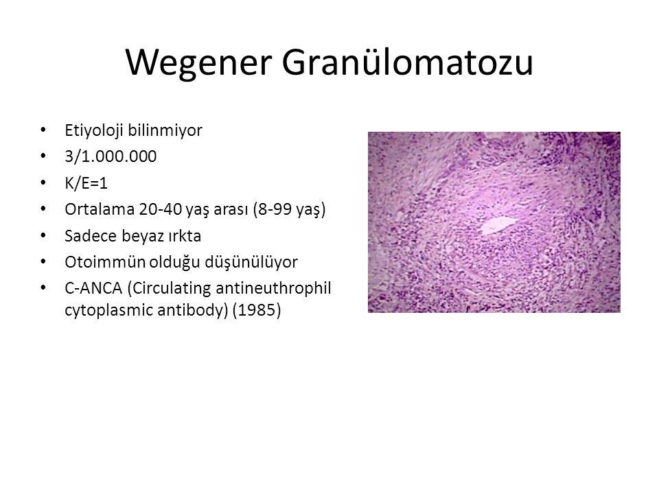 Wegener Granülomatozu Ateş, gece terlemesi, kilo kaybı, halsizlik, güçsüzlük Baş Boyun Dışı tutulum – Akciğer tutulumu (parankim, bronş, bronşiyol, trakea) (öksürük, dipne, hemoptizi) – Renal Tutulum (fokal veya progresif kresentrik glomerulonefrit) – Kas ve iskelet sistemi tutulumu (artalji ve myalji) – Kardiak (aritmi, kapak hastalğı, perikardiyal efüzyon) – Nörolojik (mononöritis simplex, nöropati, SVO, epileptik nöbet, cerebrit,menejit)