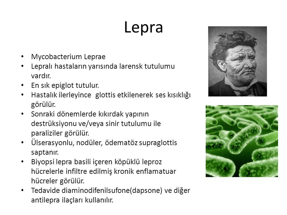 Lepra Mycobacterium Leprae Lepralı hastaların yarısında larensk tutulumu vardır. En sık epiglot tutulur. Hastalık ilerleyince glottis etkilenerek ses
