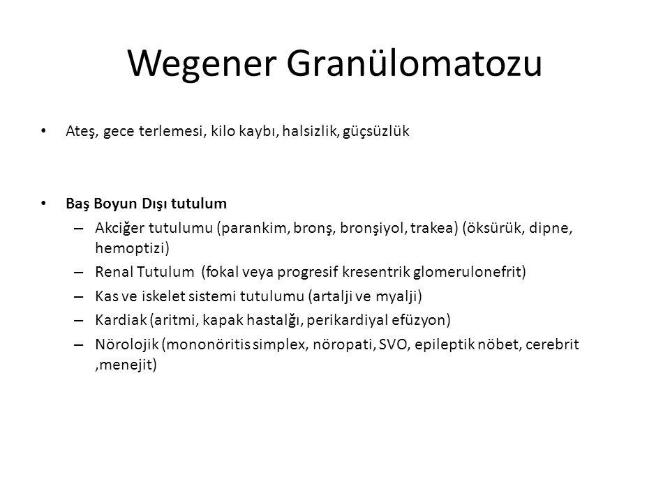 Wegener Granülomatozu Ateş, gece terlemesi, kilo kaybı, halsizlik, güçsüzlük Baş Boyun Dışı tutulum – Akciğer tutulumu (parankim, bronş, bronşiyol, tr
