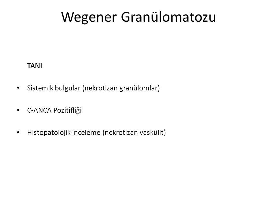Wegener Granülomatozu TEDAVİ Multidisipler yaklaşım Antiinflamatuar ve immünsupresif ajanlar Cerrahi tedavi Sistemik manifestasyonlar – Sistemik steroidler, sitotoksik ajanlar İlk basamak– Sistemik steroid + siklofosfamid Remisyon sonrası—metotrexate veya azatiopürin Anti TNF ajanlar (etanercept, infliximab)