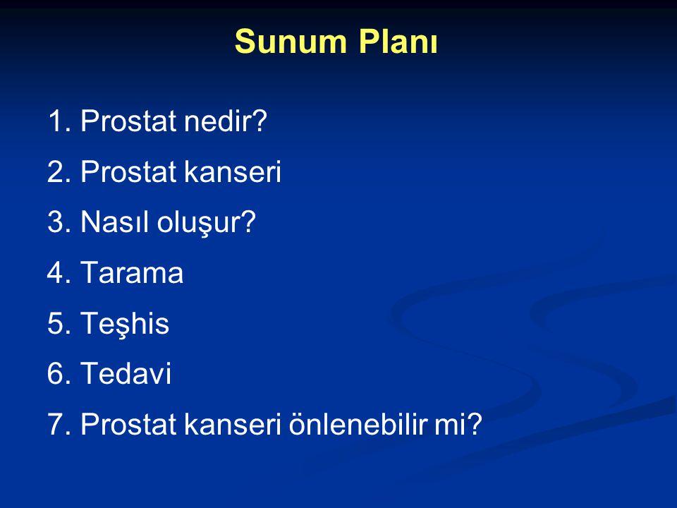 Sunum Planı 1. Prostat nedir? 2. Prostat kanseri 3. Nasıl oluşur? 4. Tarama 5. Teşhis 6. Tedavi 7. Prostat kanseri önlenebilir mi?
