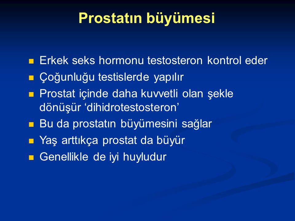Prostatın büyümesi Erkek seks hormonu testosteron kontrol eder Çoğunluğu testislerde yapılır Prostat içinde daha kuvvetli olan şekle dönüşür 'dihidrot
