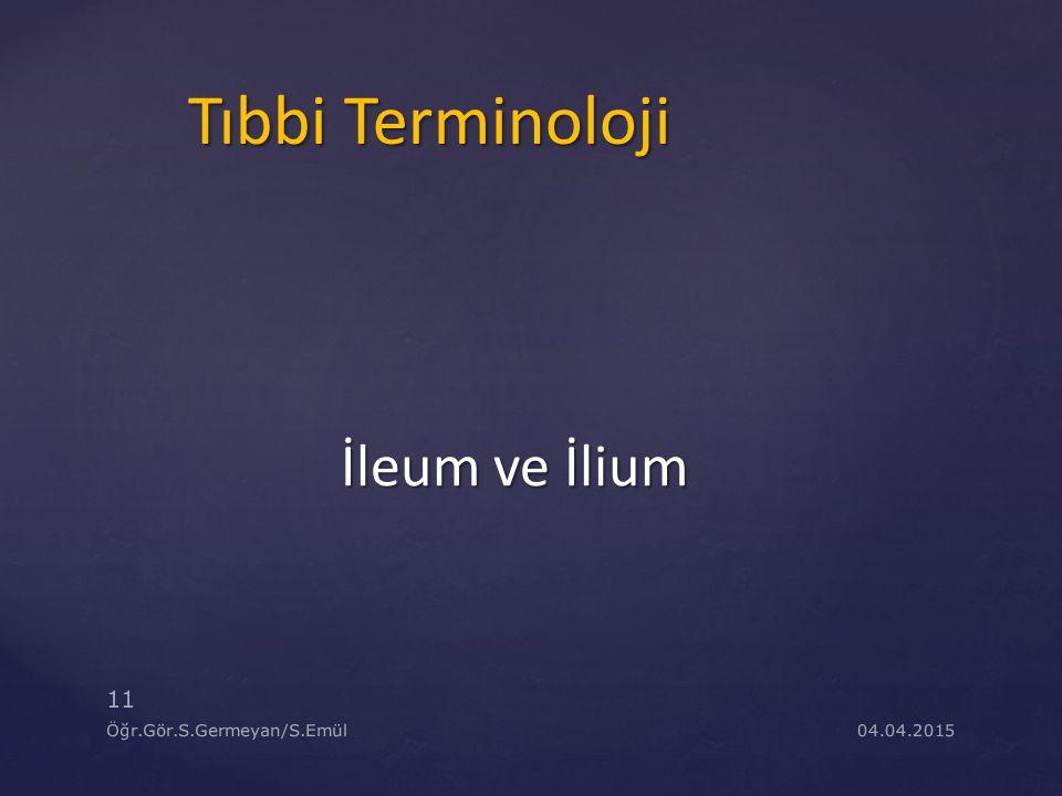 04.04.2015 11 Öğr.Gör.S.Germeyan/S.Emül Tıbbi Terminoloji İleum ve İlium