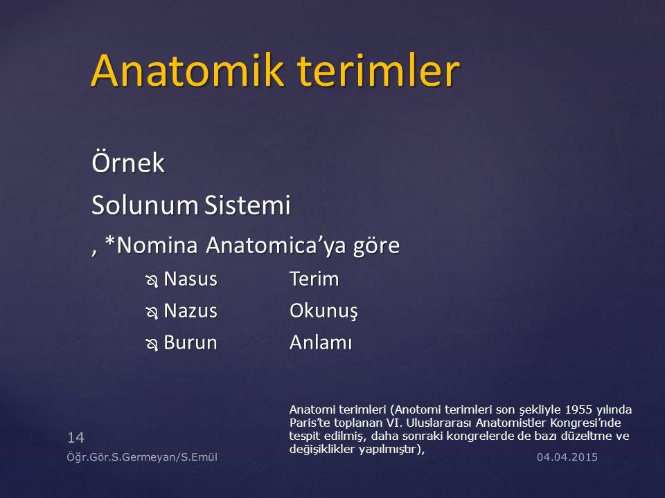 04.04.2015 14 Öğr.Gör.S.Germeyan/S.Emül Örnek Solunum Sistemi, *Nomina Anatomica'ya göre  NasusTerim  NazusOkunuş  BurunAnlamı Anatomi terimleri (A