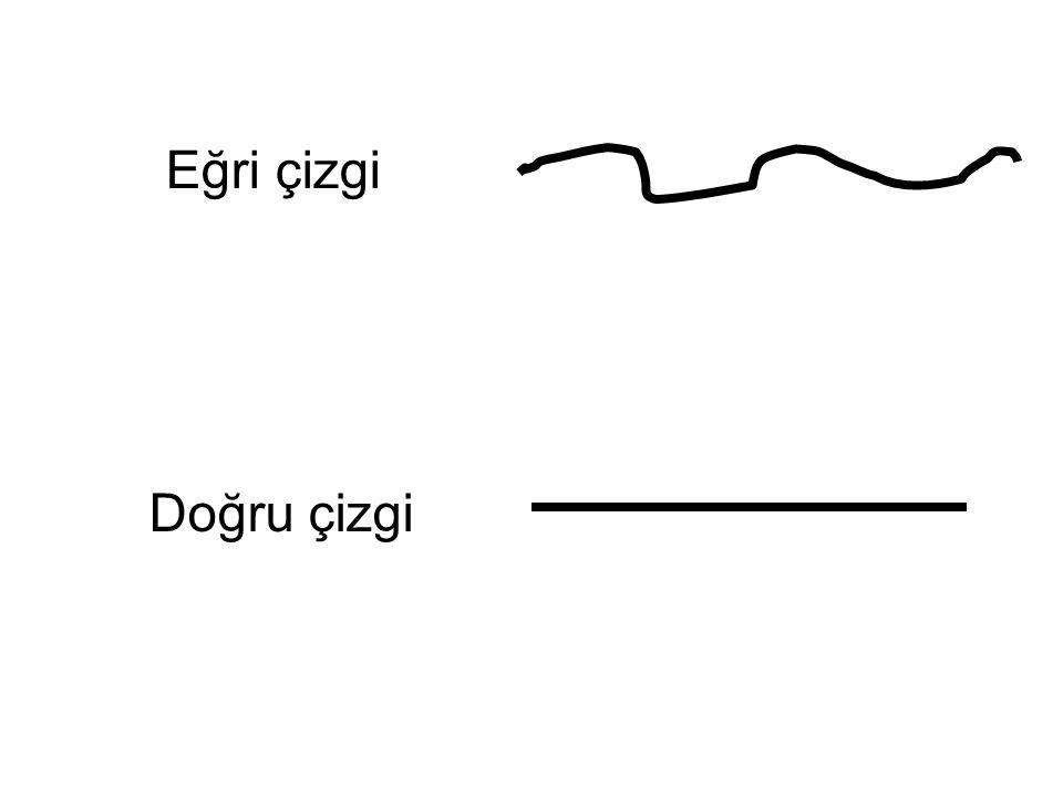 Eğri çizgi Doğru çizgi