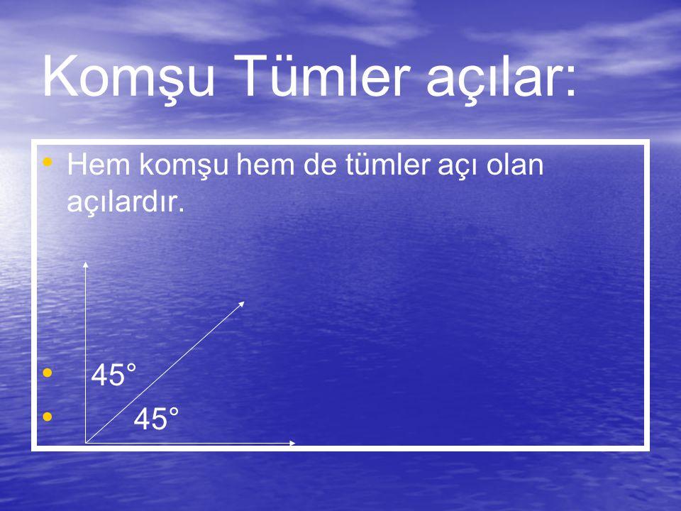 Komşu Tümler açılar: Hem komşu hem de tümler açı olan açılardır. 45°