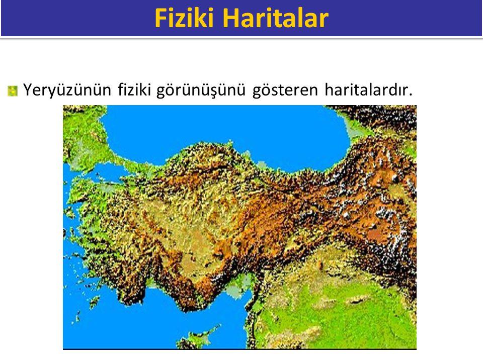 Özel Haritalar: Özel bir kullanma amacıyla oluşturulan haritalardır.