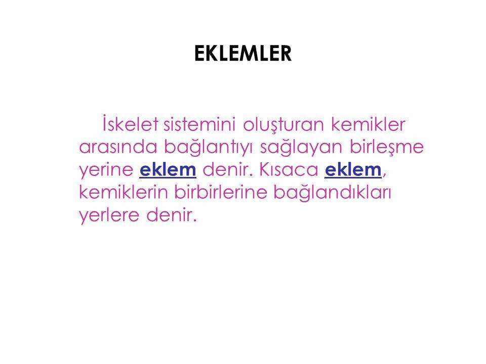 EKLEMLER İskelet sistemini oluşturan kemikler arasında bağlantıyı sağlayan birleşme yerine eklem denir. Kısaca eklem, kemiklerin birbirlerine bağlandı