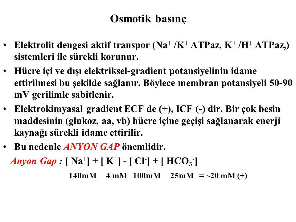 Osmotik basınç Elektrolit dengesi aktif transpor (Na + /K + ATPaz, K + /H + ATPaz,) sistemleri ile sürekli korunur. Hücre içi ve dışı elektriksel-grad
