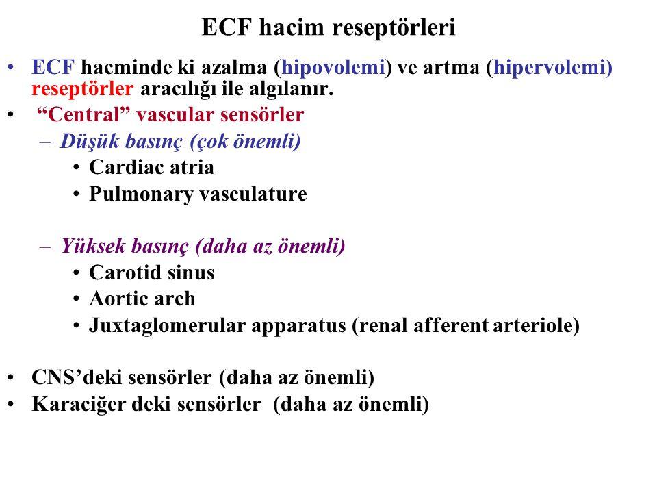 """ECF hacim reseptörleri ECF hacminde ki azalma (hipovolemi) ve artma (hipervolemi) reseptörler aracılığı ile algılanır. """"Central"""" vascular sensörler –D"""