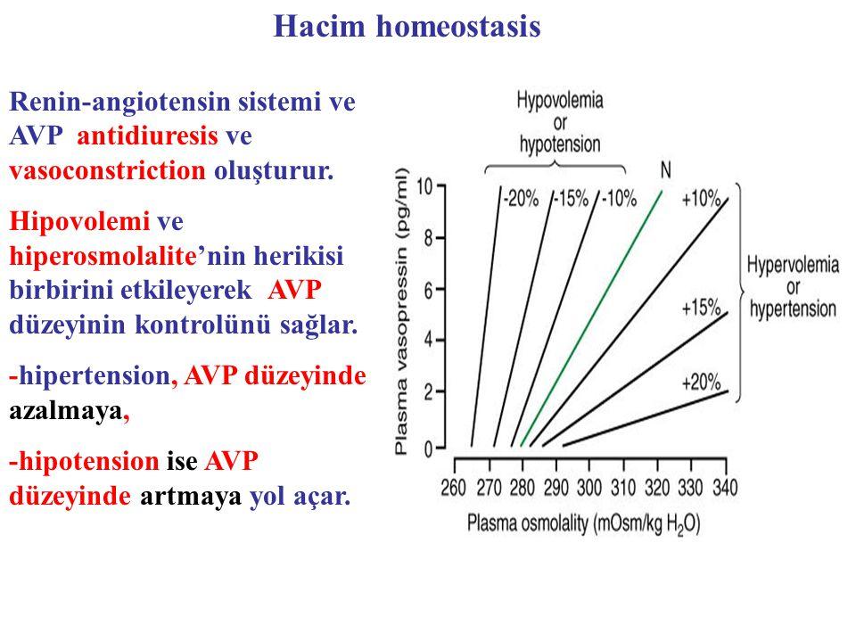 Hacim homeostasis Renin-angiotensin sistemi ve AVP antidiuresis ve vasoconstriction oluşturur. Hipovolemi ve hiperosmolalite'nin herikisi birbirini et