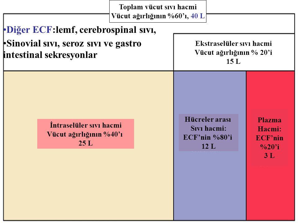 Figure 26.1 Diğer ECF:lemf, cerebrospinal sıvı, Sinovial sıvı, seroz sıvı ve gastro intestinal sekresyonlar Toplam vücut sıvı hacmi Vücut ağırlığının