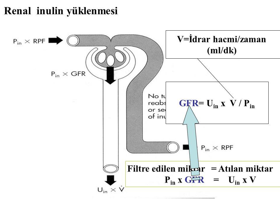 Renal inulin yüklenmesi Filtre edilen miktar= Atılan miktar P in x GFR = U in x V GFR= U in x V / P in V=İdrar hacmi/zaman (ml/dk)