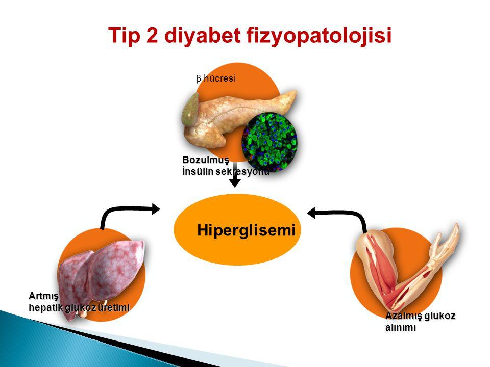 Artmış hepatik glukoz üretimi  hücresi Bozulmuş İnsülin sekresyonu Azalmış glukoz alınımı Hiperglisemi Tip 2 diyabet fizyopatolojisi