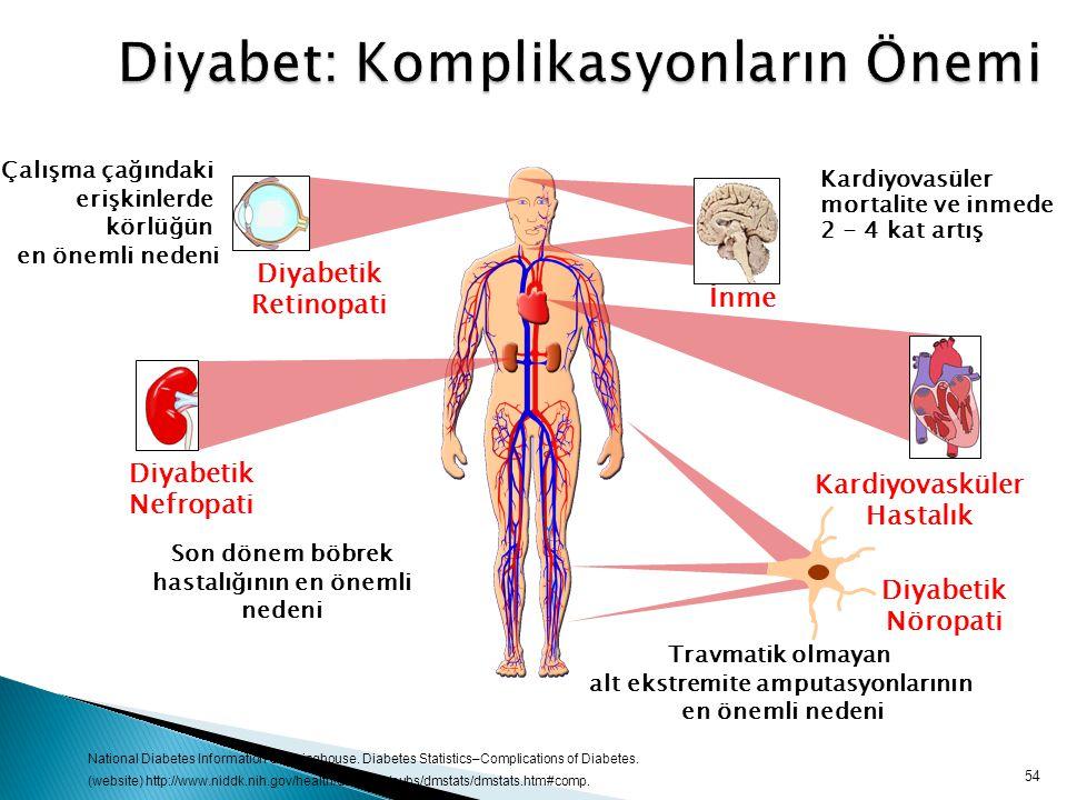 54 Diyabet: Komplikasyonların Önemi Diyabetik Retinopati Çalışma çağındaki erişkinlerde körlüğün en önemli nedeni Diyabetik Nöropati Travmatik olmayan