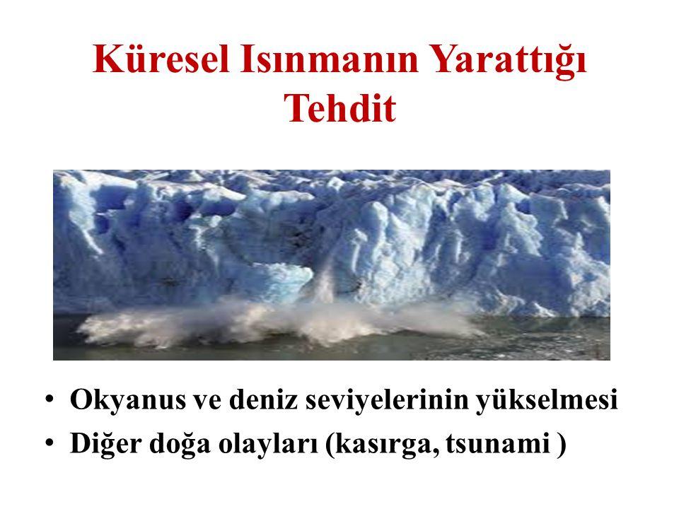 Küresel Isınmanın Yarattığı Tehdit Okyanus ve deniz seviyelerinin yükselmesi Diğer doğa olayları (kasırga, tsunami )