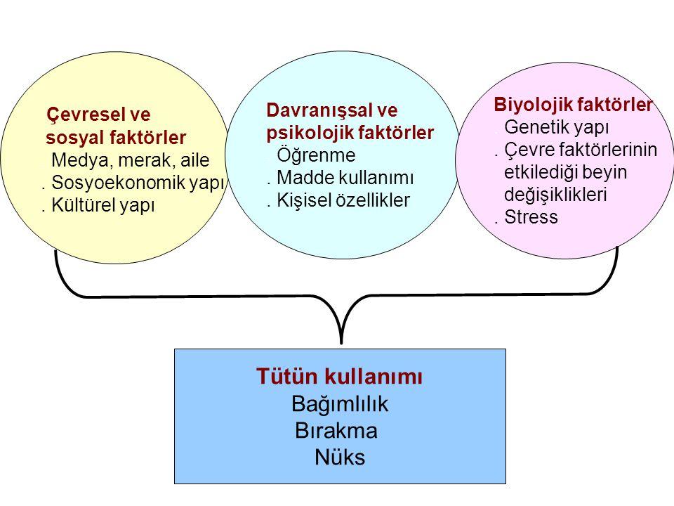 Çevresel ve sosyal faktörler. Medya, merak, aile. Sosyoekonomik yapı. Kültürel yapı Davranışsal ve psikolojik faktörler. Öğrenme. Madde kullanımı. Kiş