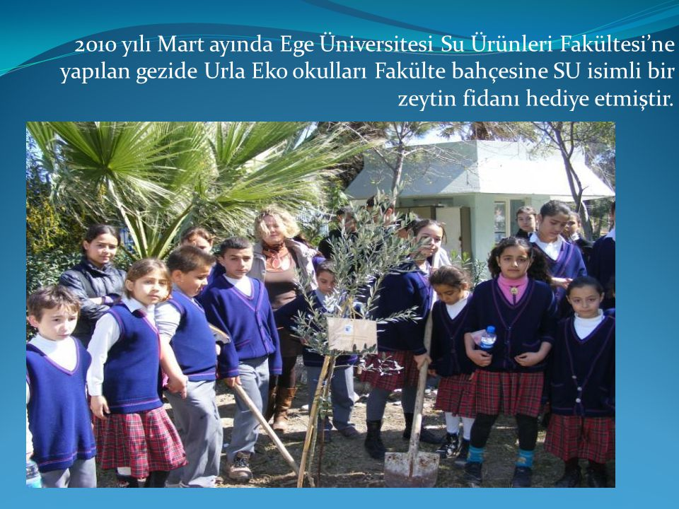 2010 yılı Mart ayında Ege Üniversitesi Su Ürünleri Fakültesi'ne yapılan gezide Urla Eko okulları Fakülte bahçesine SU isimli bir zeytin fidanı hediye