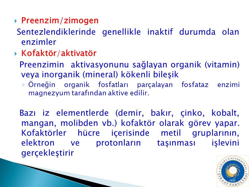  Preenzim/zimogen Sentezlendiklerinde genellikle inaktif durumda olan enzimler  Kofaktör/aktivatör Preenzimin aktivasyonunu sağlayan organik (vitami