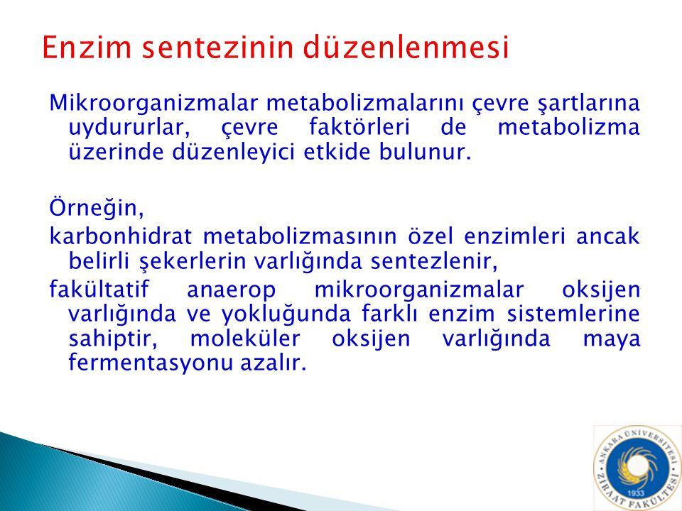 Mikroorganizmalar metabolizmalarını çevre şartlarına uydururlar, çevre faktörleri de metabolizma üzerinde düzenleyici etkide bulunur. Örneğin, karbonh