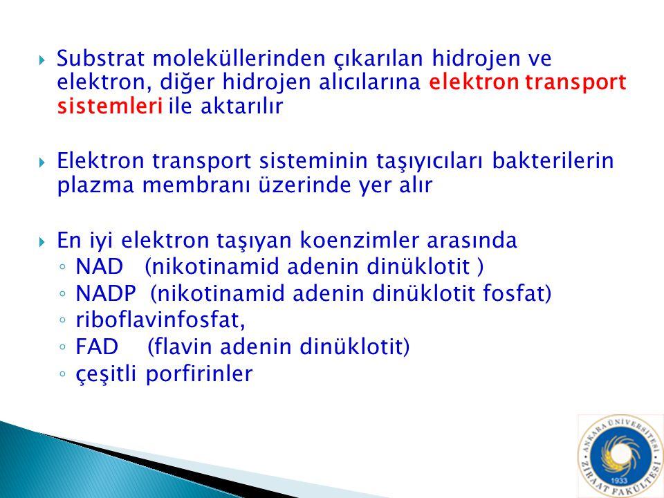  Substrat moleküllerinden çıkarılan hidrojen ve elektron, diğer hidrojen alıcılarına elektron transport sistemleri ile aktarılır  Elektron transport