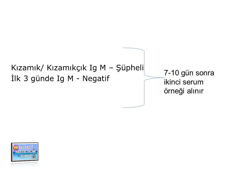 Kızamık/ Kızamıkçık Ig M – Şüpheli İlk 3 günde Ig M - Negatif 7-10 gün sonra ikinci serum örneği alınır