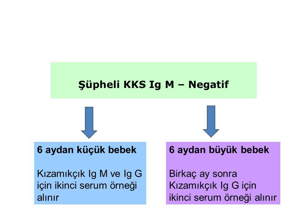 Şüpheli KKS Ig M – Negatif 6 aydan büyük bebek Birkaç ay sonra Kızamıkçık Ig G için ikinci serum örneği alınır 6 aydan küçük bebek Kızamıkçık Ig M ve