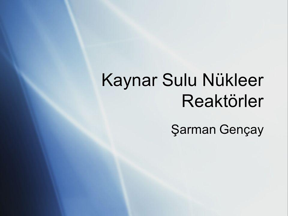 Kaynar Sulu Nükleer Reaktörler Şarman Gençay