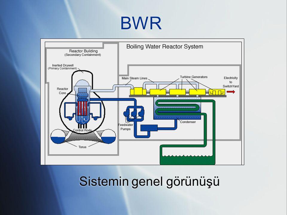 A BWR ABWR karakteristik değerleri:  Güç: 3926 MW (th)/1356 MW(e)  Akış debileri  52200 t/saat kalp  7640 t/saat buhar  7640 t/saat besleme suyu ABWR karakteristik değerleri:  Güç: 3926 MW (th)/1356 MW(e)  Akış debileri  52200 t/saat kalp  7640 t/saat buhar  7640 t/saat besleme suyu