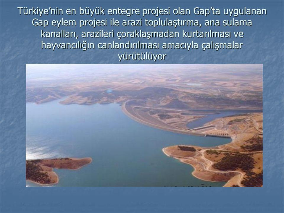 Türkiye'nin en büyük entegre projesi olan Gap'ta uygulanan Gap eylem projesi ile arazi toplulaştırma, ana sulama kanalları, arazileri çoraklaşmadan kurtarılması ve hayvancılığın canlandırılması amacıyla çalışmalar yürütülüyor