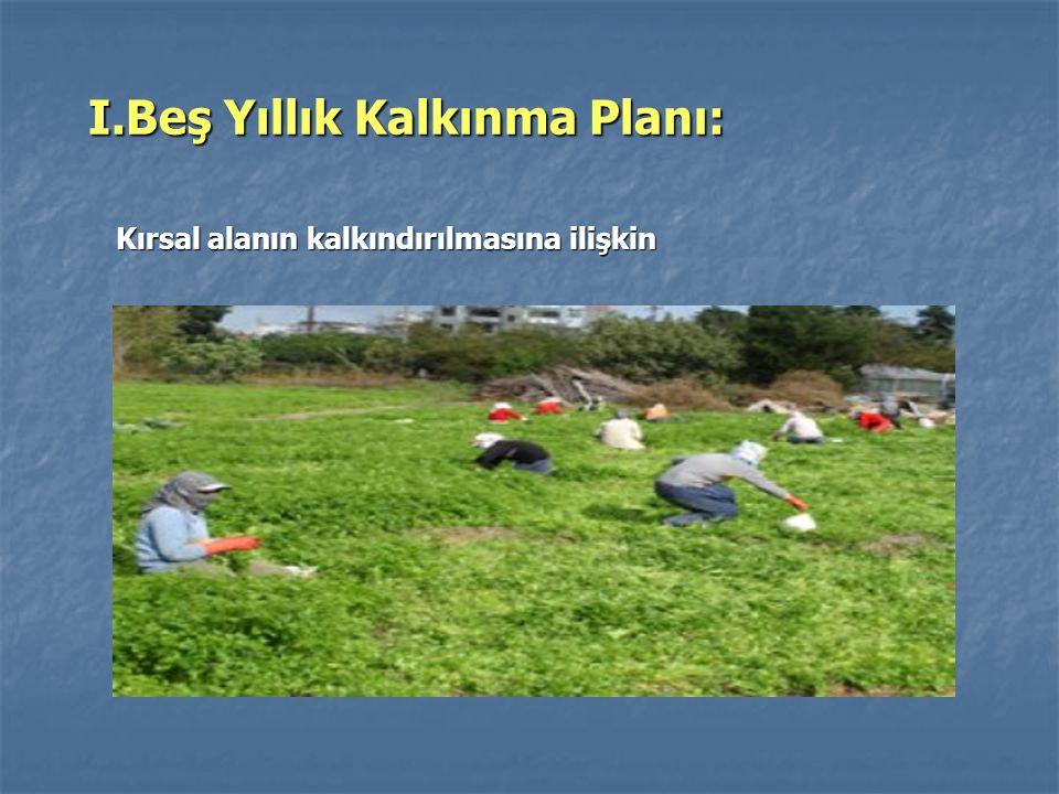 I.Beş Yıllık Kalkınma Planı: I.Beş Yıllık Kalkınma Planı: Kırsal alanın kalkındırılmasına ilişkin Kırsal alanın kalkındırılmasına ilişkin